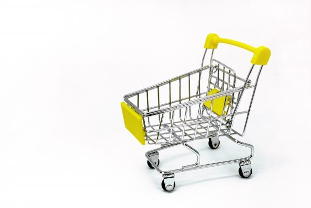 独自ドメインによるネットショップとモールへの出店どちらから始めるか?